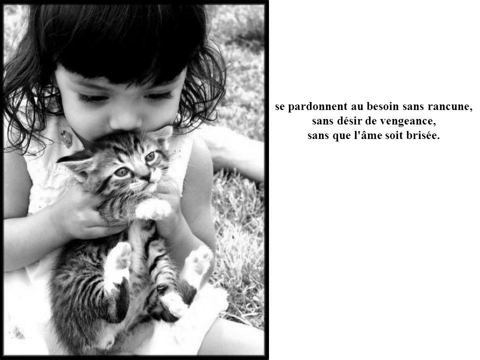 se pardonnent au besoin sans rancune, sans désir de vengeance, sans que l âme soit brisée.