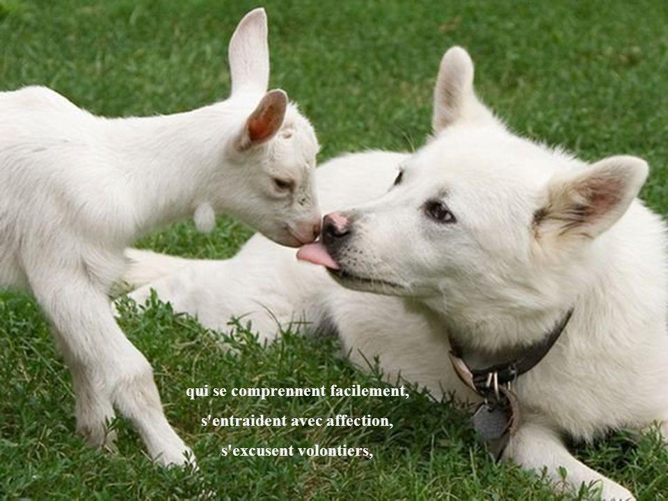 qui se comprennent facilement, s entraident avec affection,