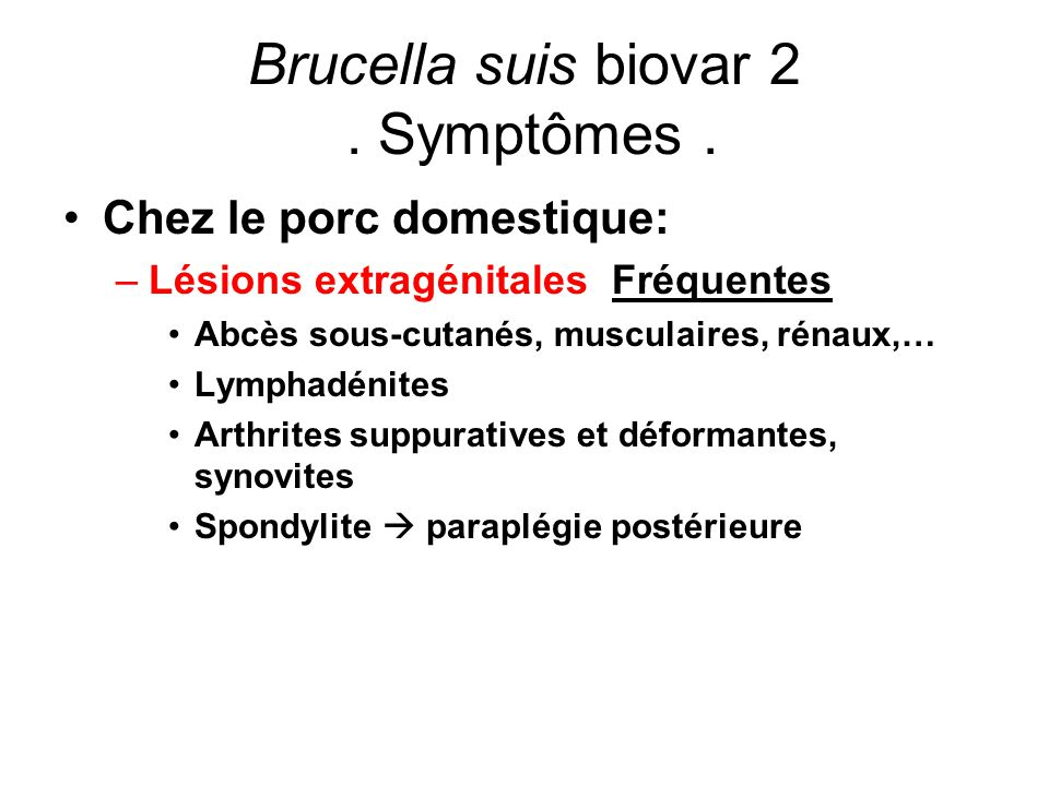 Brucella suis biovar 2 . Symptômes .