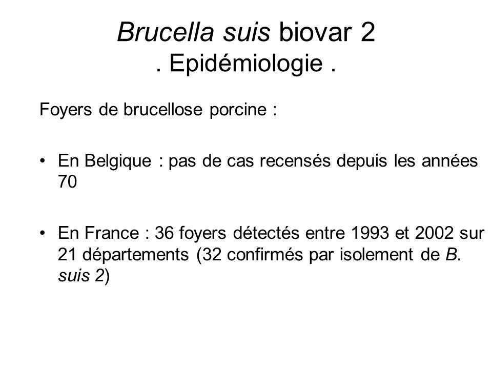 Brucella suis biovar 2 . Epidémiologie .