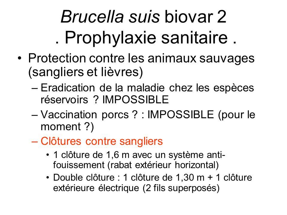 Brucella suis biovar 2 . Prophylaxie sanitaire .