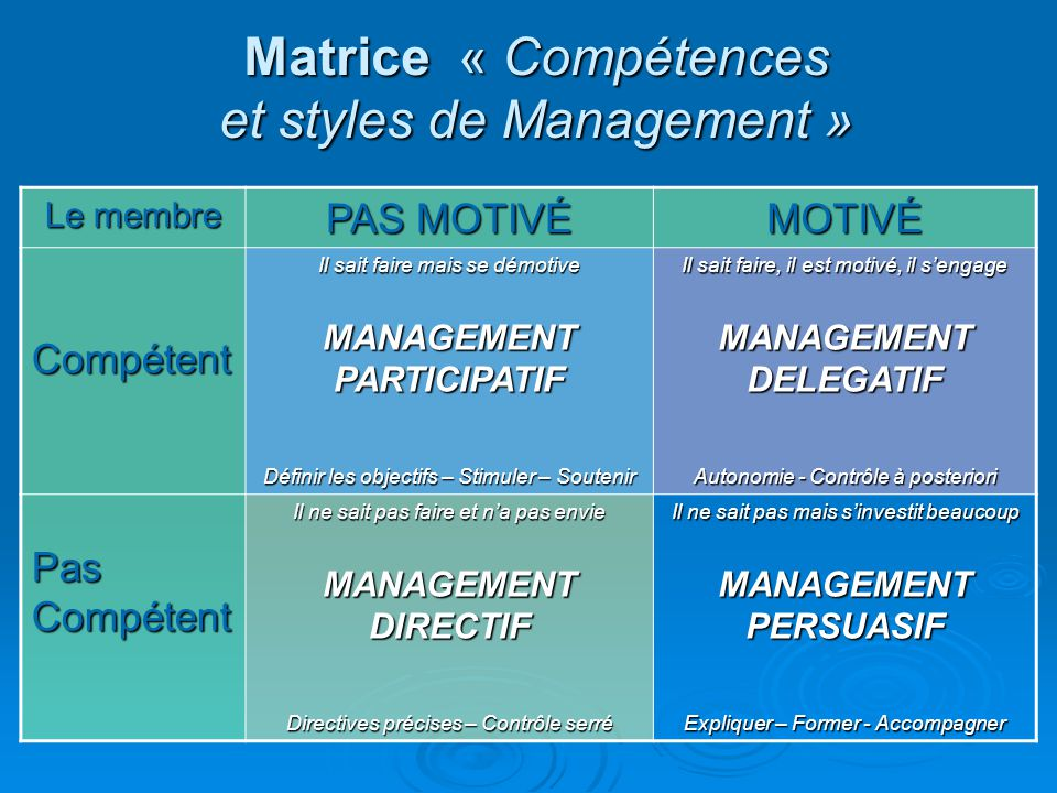 Matrice « Compétences et styles de Management »