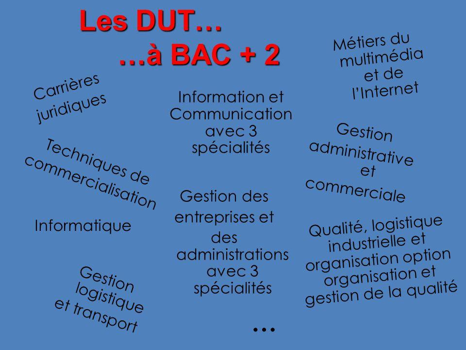 Les DUT… …à BAC + 2 … Métiers du multimédia et de l'Internet Carrières