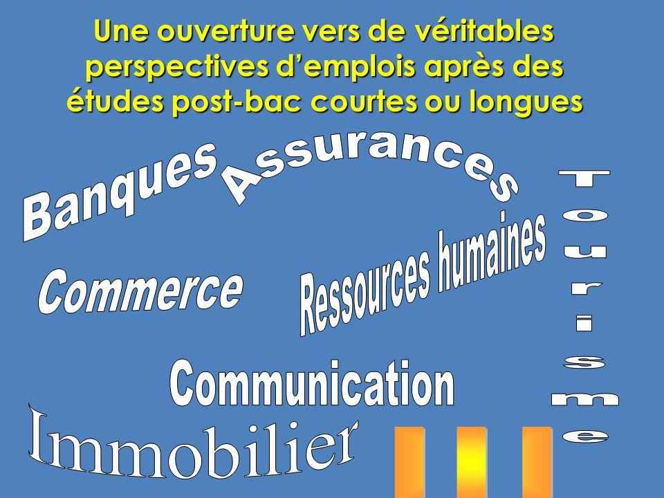 Tourisme . . . Banques Assurances Ressources humaines Commerce