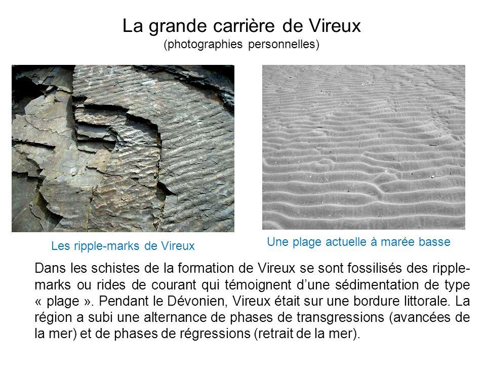 La grande carrière de Vireux (photographies personnelles)