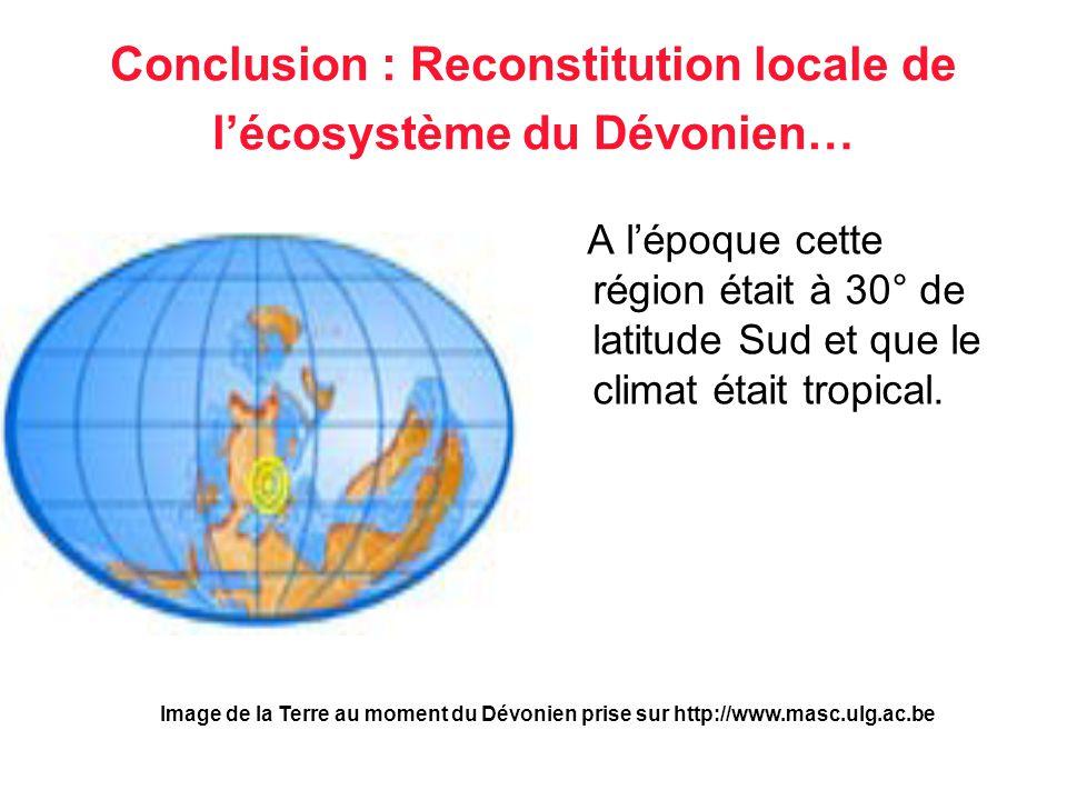 Conclusion : Reconstitution locale de l'écosystème du Dévonien…