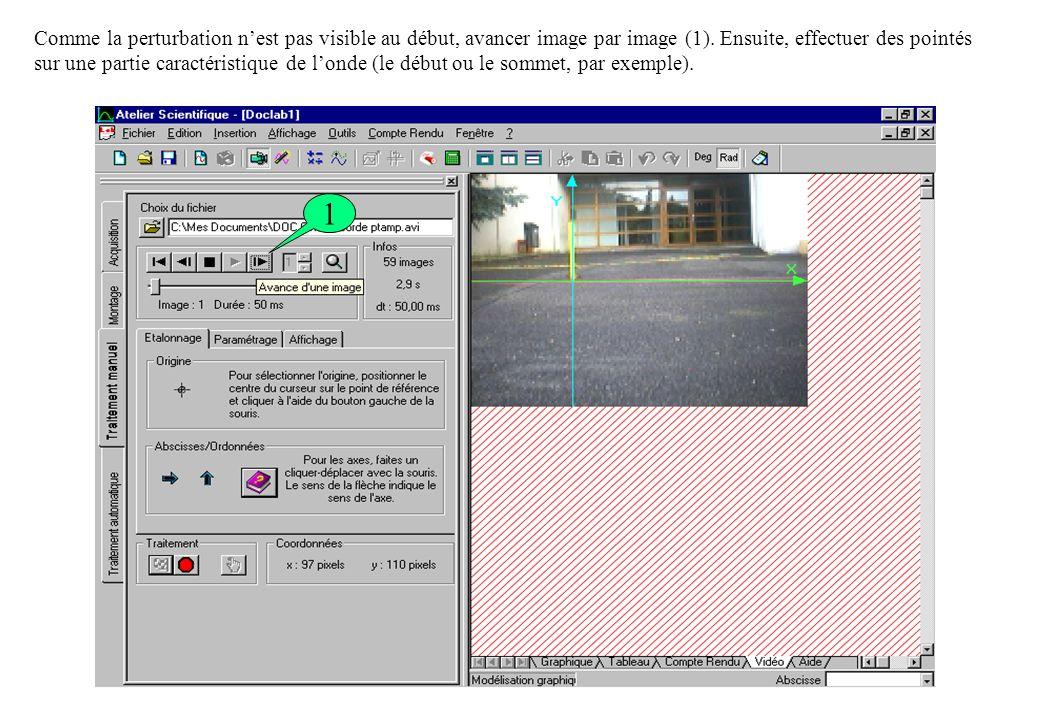 Comme la perturbation n'est pas visible au début, avancer image par image (1). Ensuite, effectuer des pointés sur une partie caractéristique de l'onde (le début ou le sommet, par exemple).