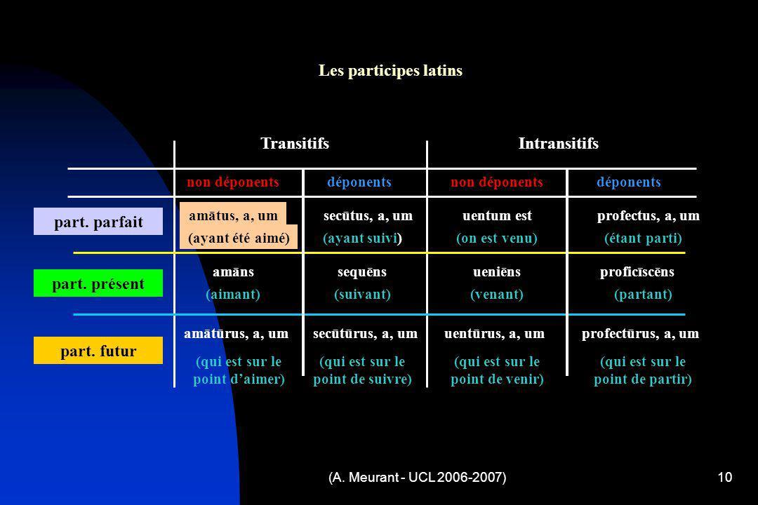 Les participes latins Transitifs Intransitifs part. parfait