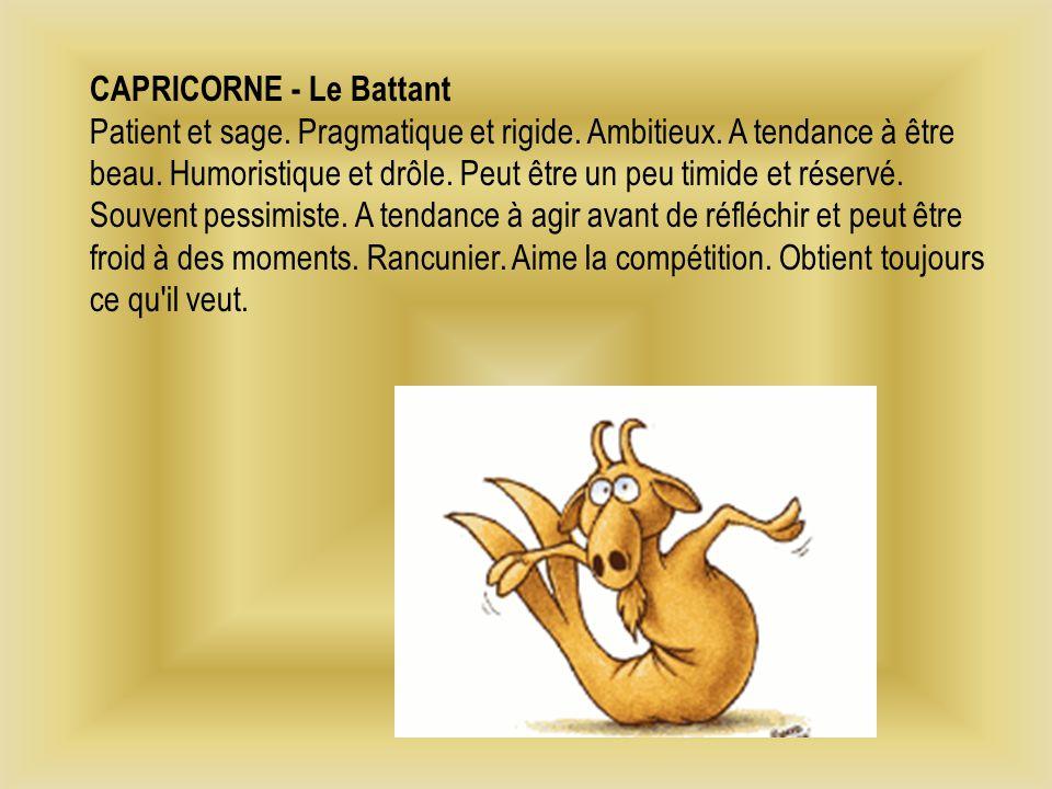 CAPRICORNE - Le Battant Patient et sage. Pragmatique et rigide