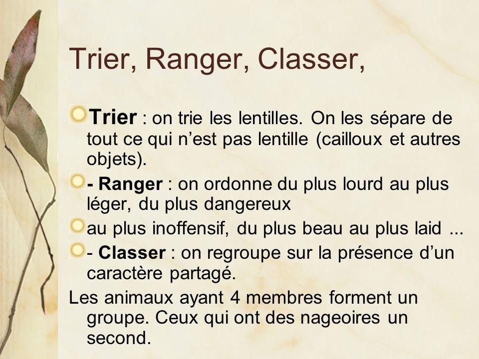 Trier, Ranger, Classer, Trier : on trie les lentilles. On les sépare de tout ce qui n'est pas lentille (cailloux et autres objets).
