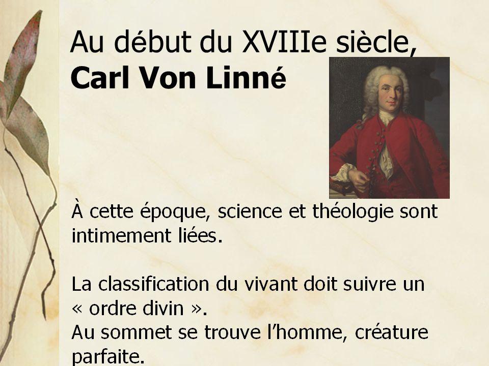 Au début du XVIIIe siècle, Carl Von Linné