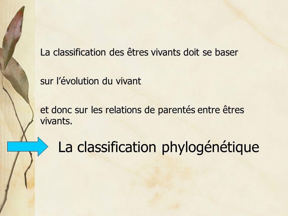 La classification phylogénétique