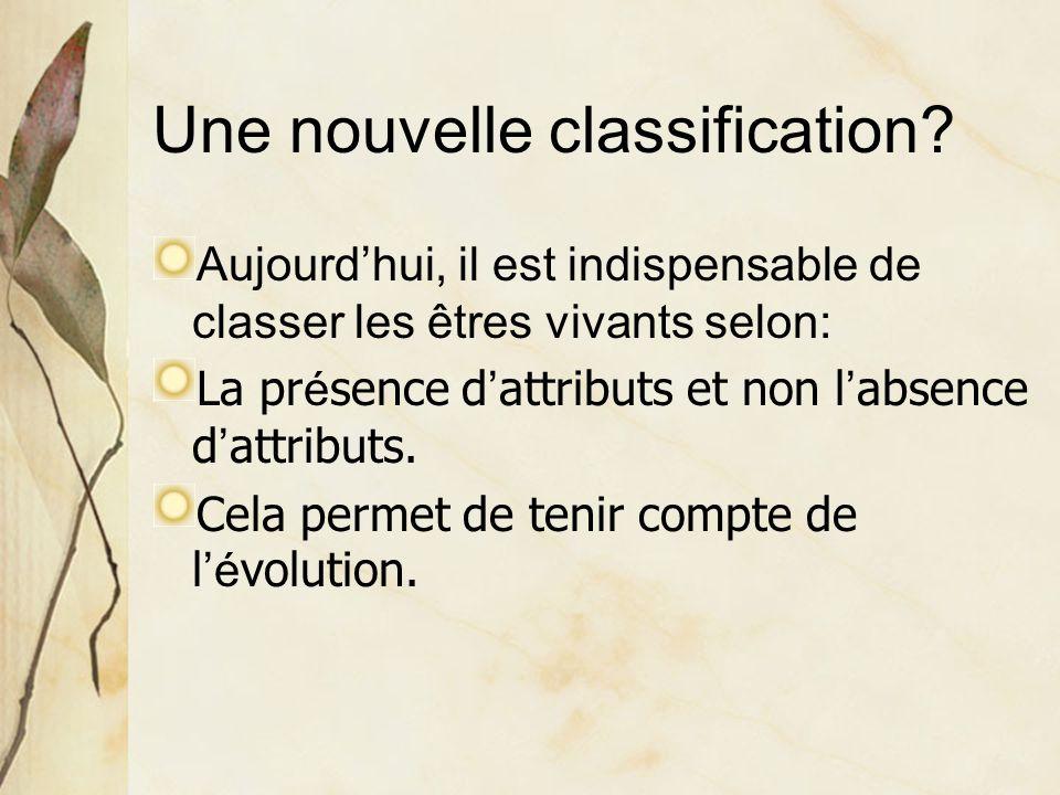 Une nouvelle classification