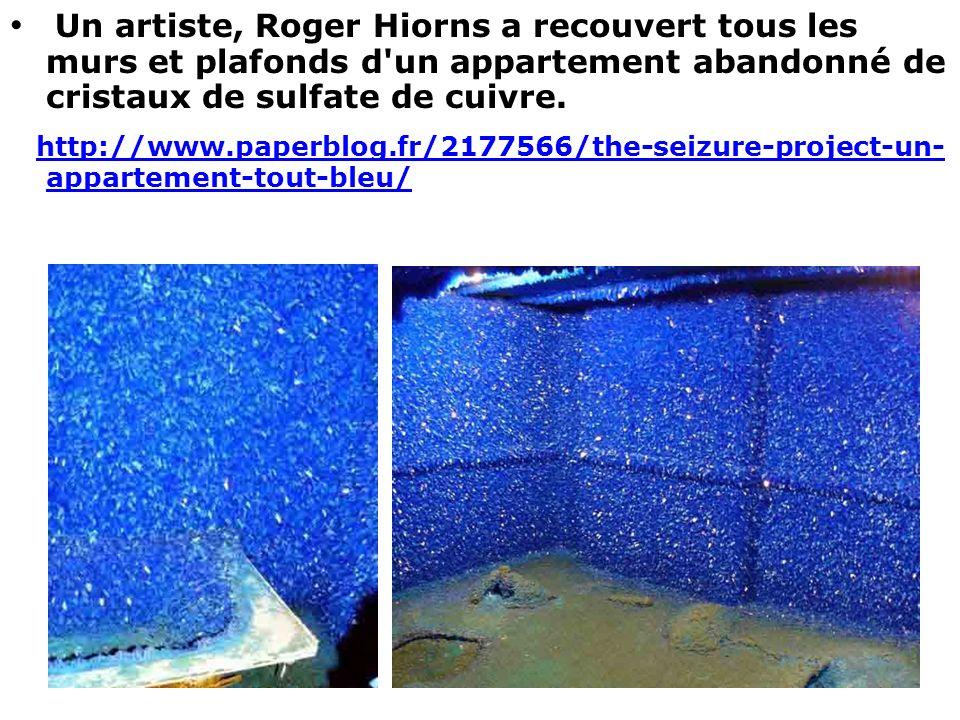 Un artiste, Roger Hiorns a recouvert tous les murs et plafonds d un appartement abandonné de cristaux de sulfate de cuivre.