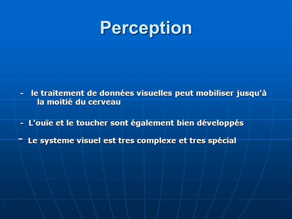 Perception - Le systeme visuel est tres complexe et tres spécial