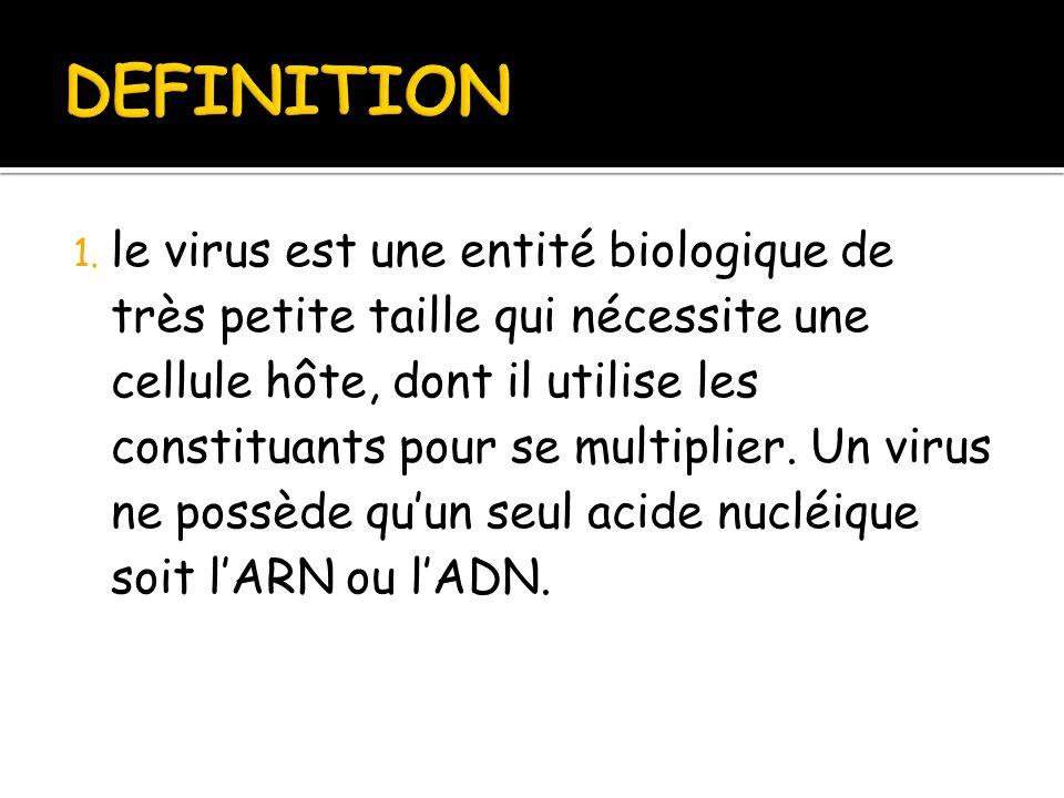 Les virus par s abdessemed ppt t l charger - Qu est ce qu une chambre d hote ...