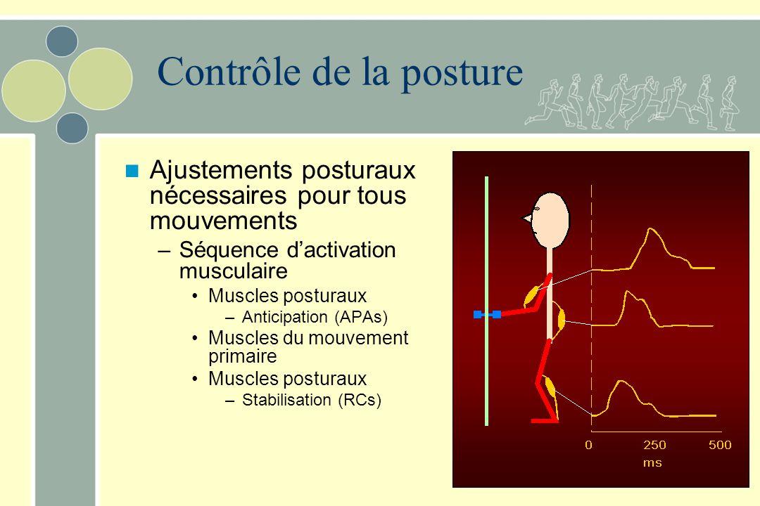 Contrôle de la posture Ajustements posturaux nécessaires pour tous mouvements. Séquence d'activation musculaire.