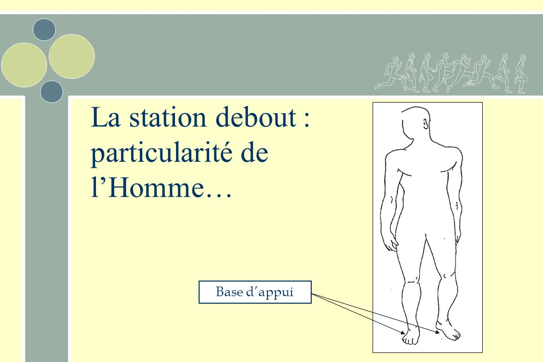 La station debout : particularité de l'Homme…