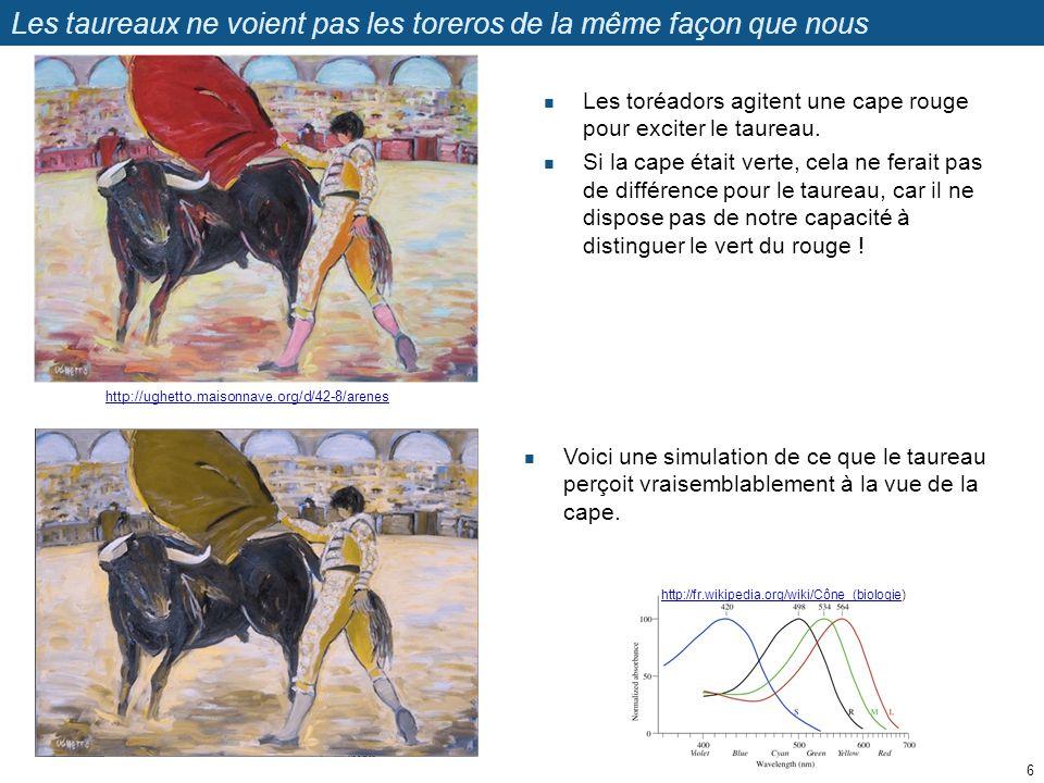 Les taureaux ne voient pas les toreros de la même façon que nous