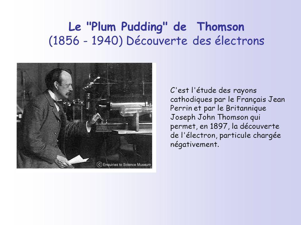 Le Plum Pudding de Thomson