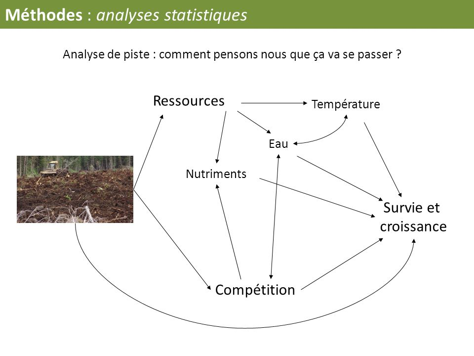 Méthodes : analyses statistiques