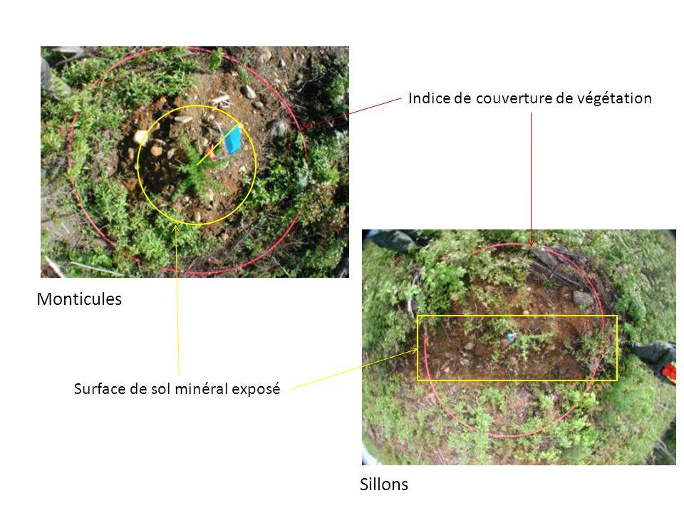 Monticules Sillons Indice de couverture de végétation