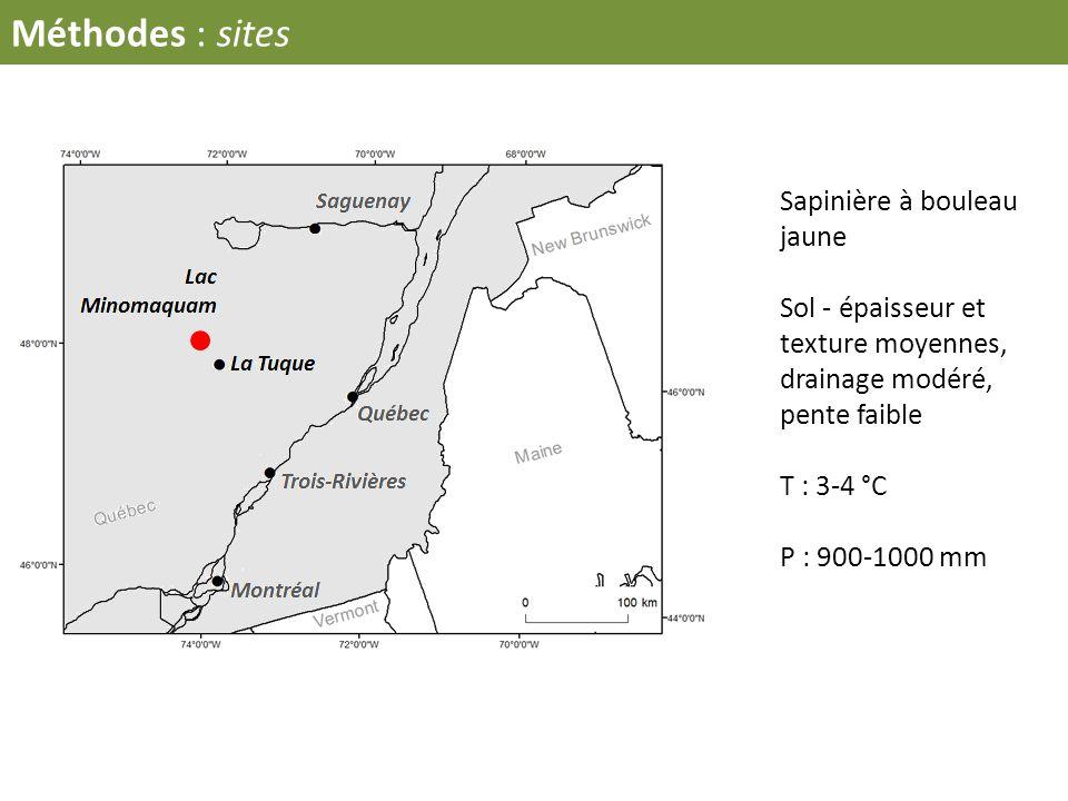 Méthodes : sites Sapinière à bouleau jaune