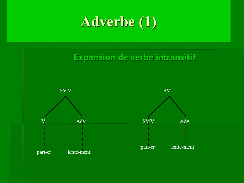 Adverbe (1) Expansion de verbe intransitif SV:V V Adv SV