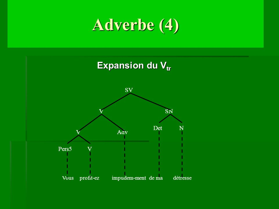 Adverbe (4) Expansion du Vtr V Adv Pers5 SN N Det SV