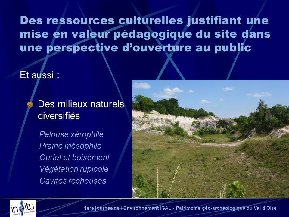 Des ressources culturelles justifiant une mise en valeur pédagogique du site dans une perspective d'ouverture au public