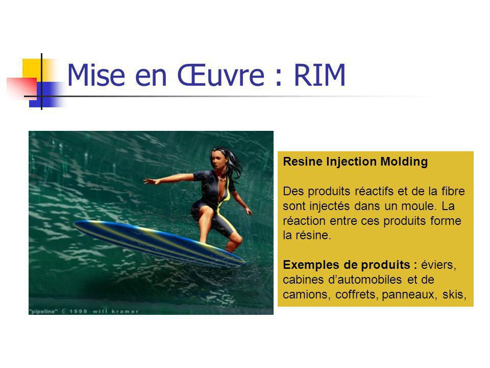 Mise en Œuvre : RIM Resine Injection Molding