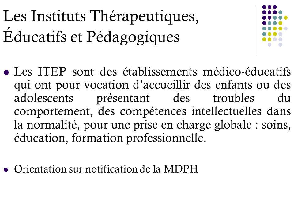 Les Instituts Thérapeutiques, Éducatifs et Pédagogiques