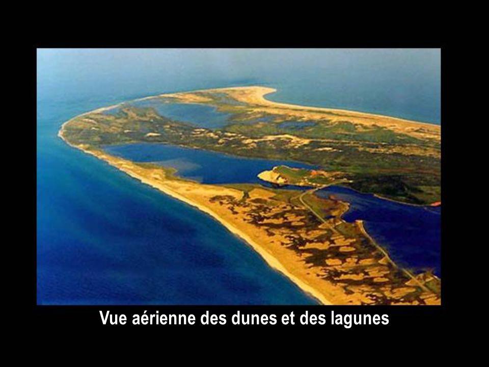 Vue aérienne des dunes et des lagunes