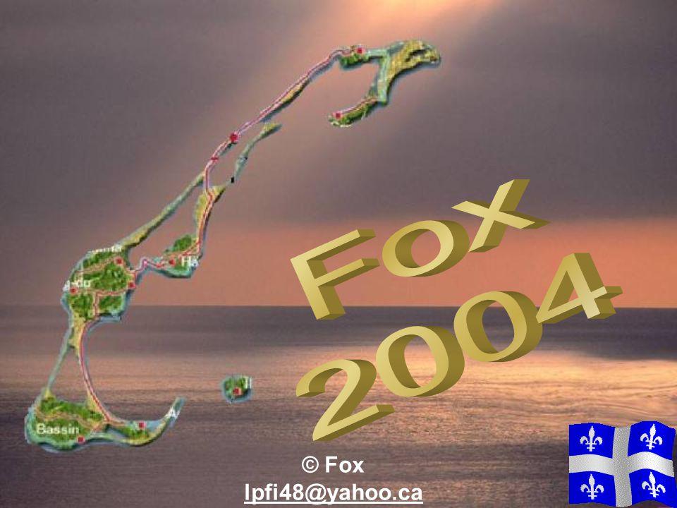 Fox 2004 © Fox lpfi48@yahoo.ca