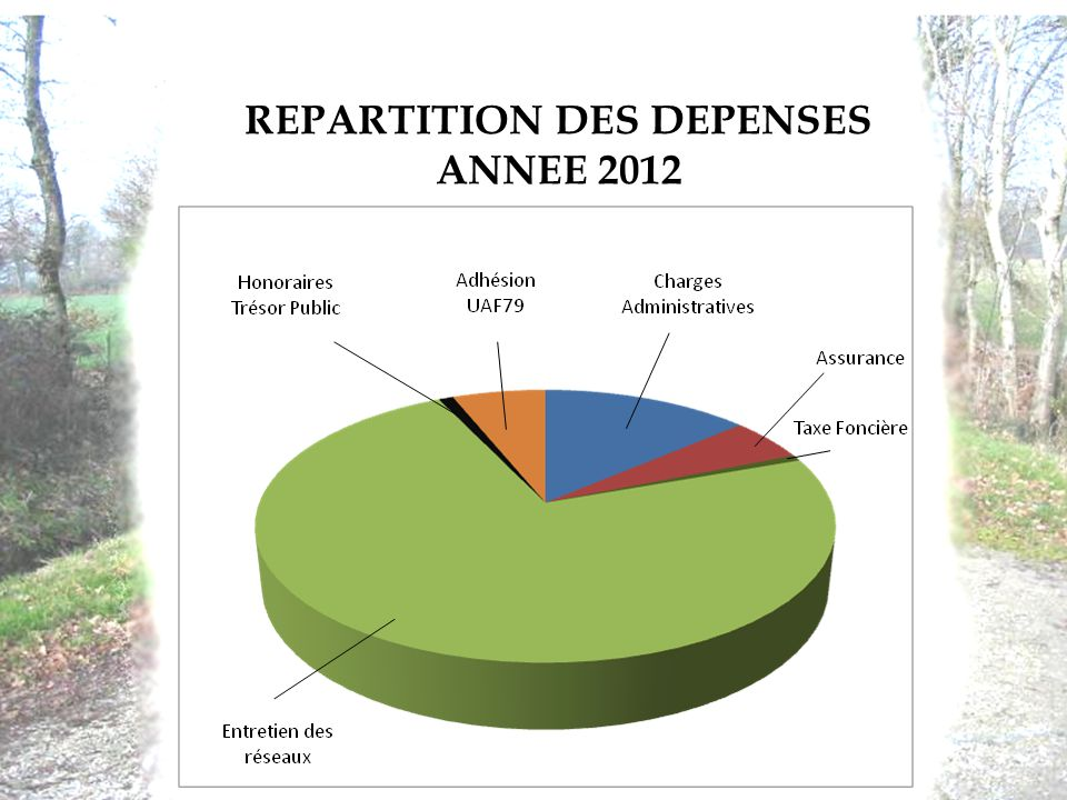 REPARTITION DES DEPENSES ANNEE 2012