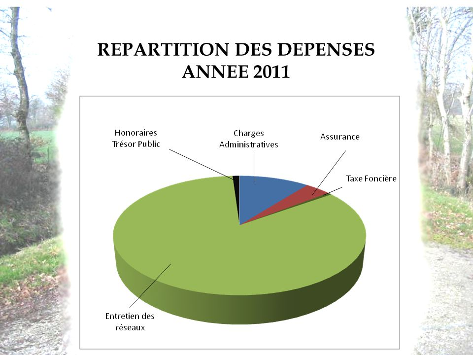 REPARTITION DES DEPENSES ANNEE 2011
