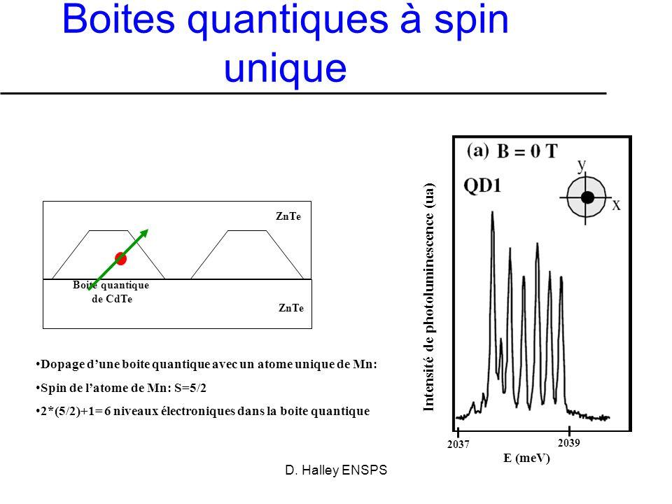 Boites quantiques à spin unique