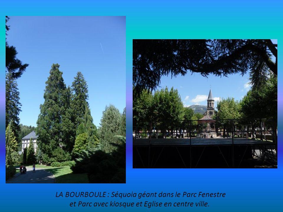 LA BOURBOULE : Séquoia géant dans le Parc Fenestre