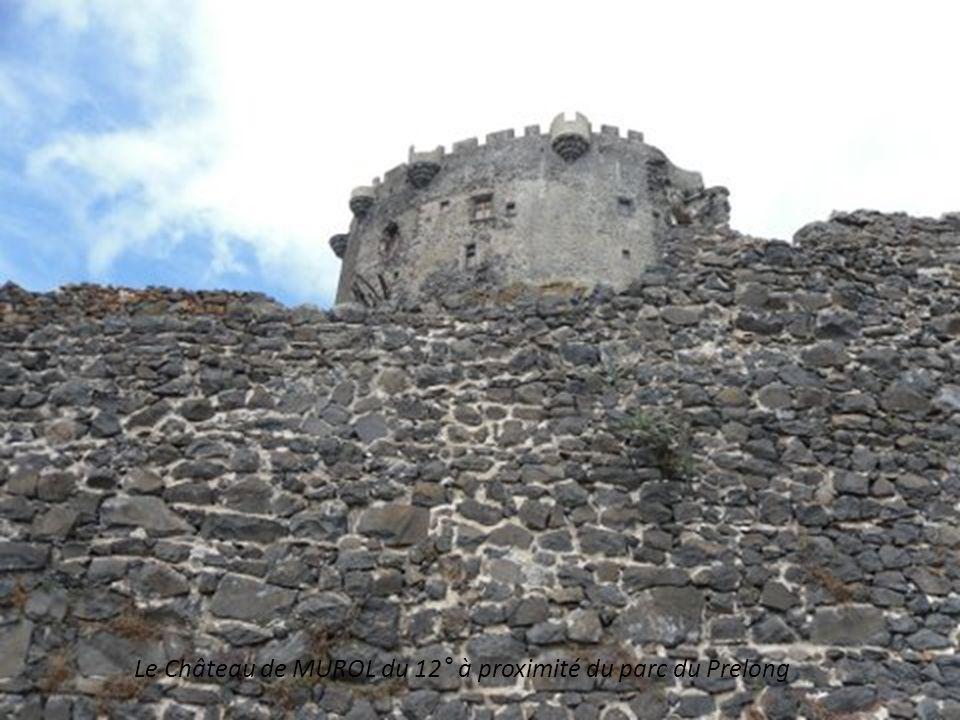 Le Château de MUROL du 12° à proximité du parc du Prelong