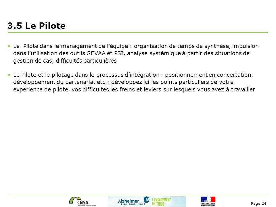 3.5 Le Pilote