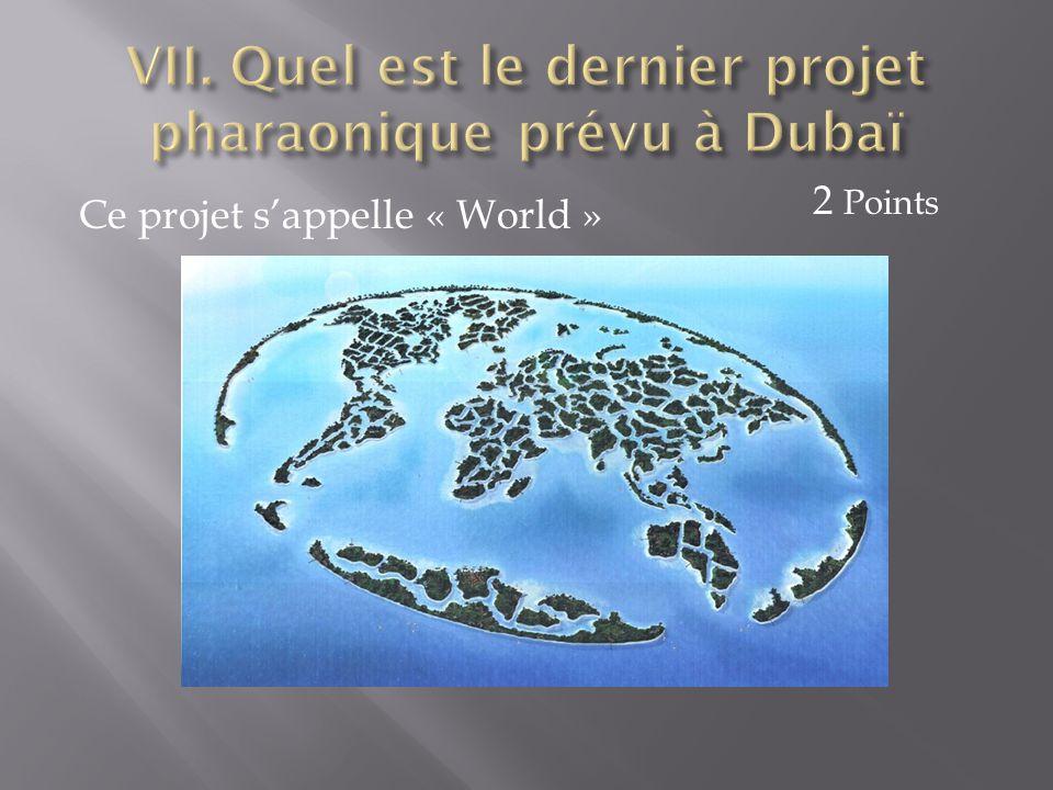 VII. Quel est le dernier projet pharaonique prévu à Dubaï