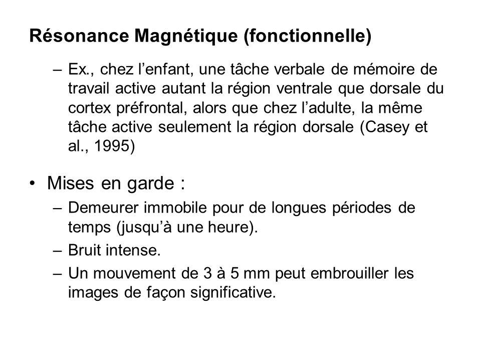 Résonance Magnétique (fonctionnelle)