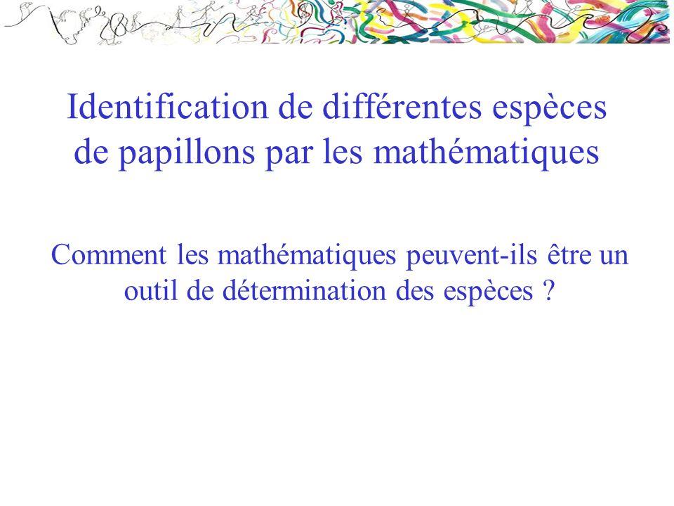 Identification de différentes espèces de papillons par les mathématiques