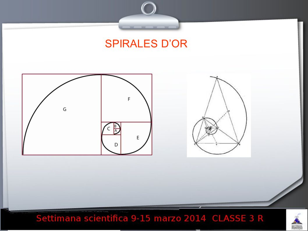 SPIRALES D'OR 12