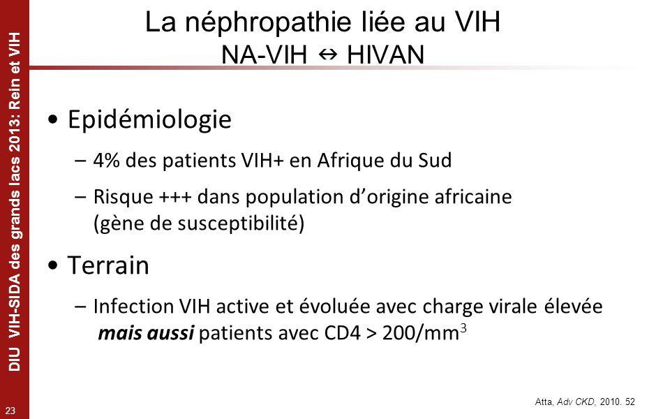 La néphropathie liée au VIH NA-VIH  HIVAN