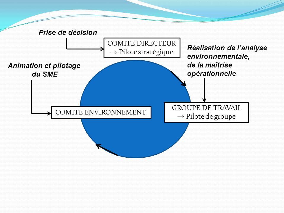 Prise de décision COMITE DIRECTEUR. → Pilote stratégique. Réalisation de l'analyse. environnementale,