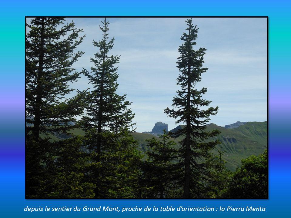depuis le sentier du Grand Mont, proche de la table d'orientation : la Pierra Menta
