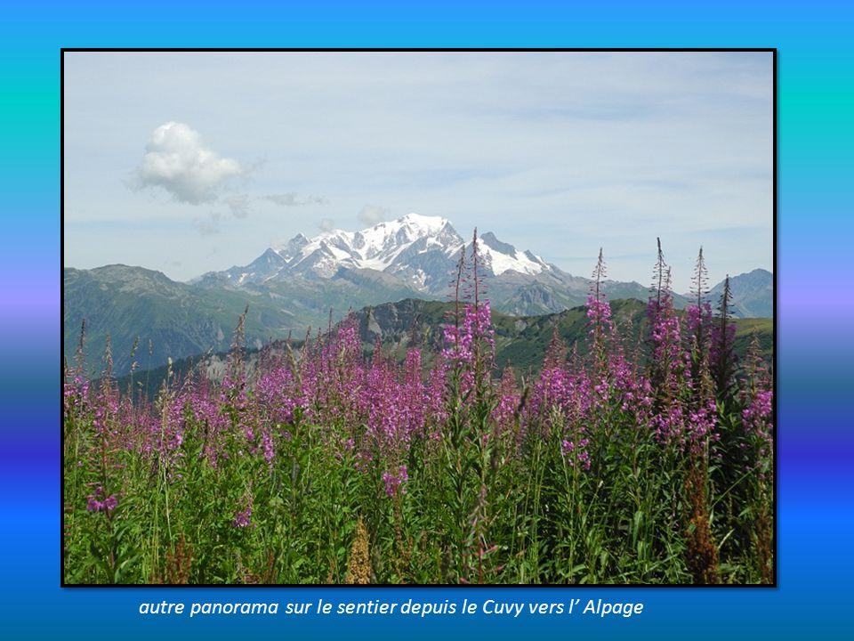 autre panorama sur le sentier depuis le Cuvy vers l' Alpage