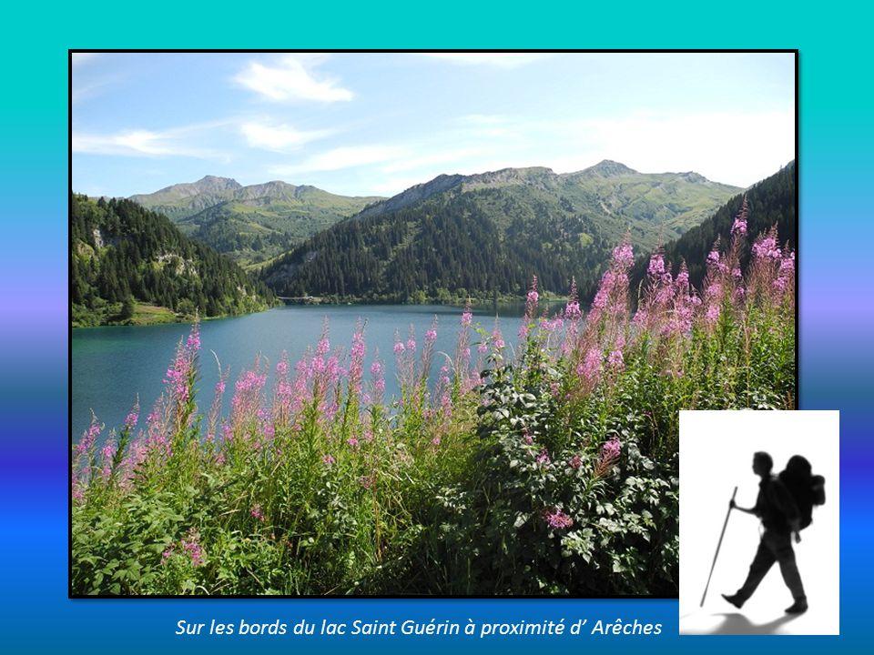 Sur les bords du lac Saint Guérin à proximité d' Arêches