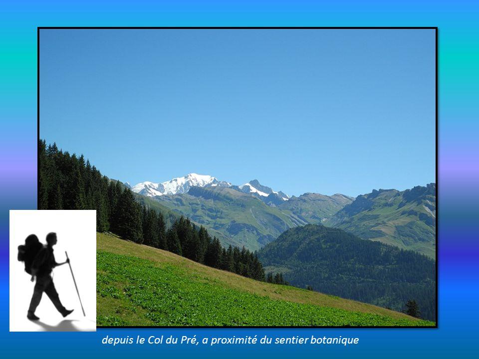 depuis le Col du Pré, a proximité du sentier botanique